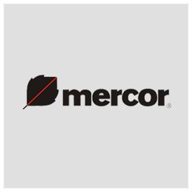 mercor log